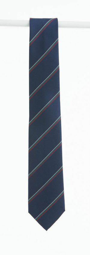 Pobailscoil-Palmerstown-Tie