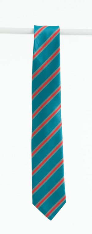 Hartstown-Community-School-tie