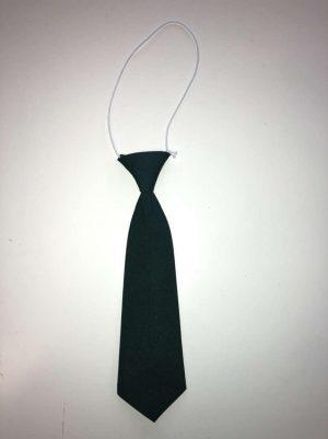 Scoil-Sinead-Pelletstown-Tie