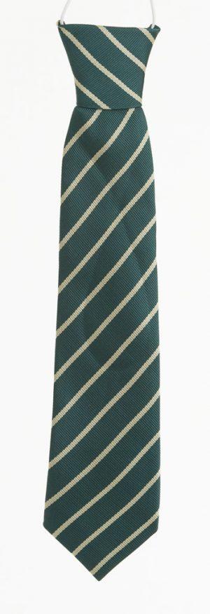 St-Patricks-Diswellstown-Tie